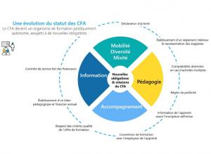 Evolution du statut des CFA
